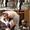 Свадебный фотограф Сумы,  Киев #275735