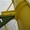 отвал для снега на МТЗ #1213110