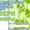 Металлопластиковые окна и двери не дорого в Сумах #1421616