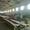 Продается ленточная пилорама б/у Ясень ВСГ-1000-3 в хорошем рабочем состоянии #1607635