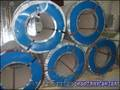 сталь оцинкованная с полимерным покрытием в рулонах - Изображение #3, Объявление #937486
