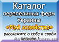 Адреса перепелиных хозяйств в Украине